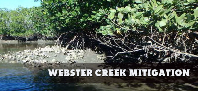 Webster Creek Mitigation Bank