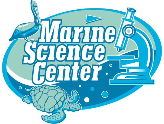 Marine Science Center extends summer camps