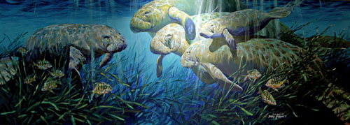 painting of four manatees underwater in crystal clear blue water