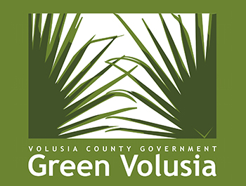 Green volusia logo