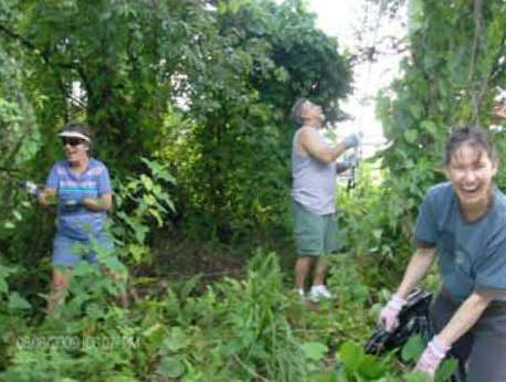 Citizens removing exotic plants on lands