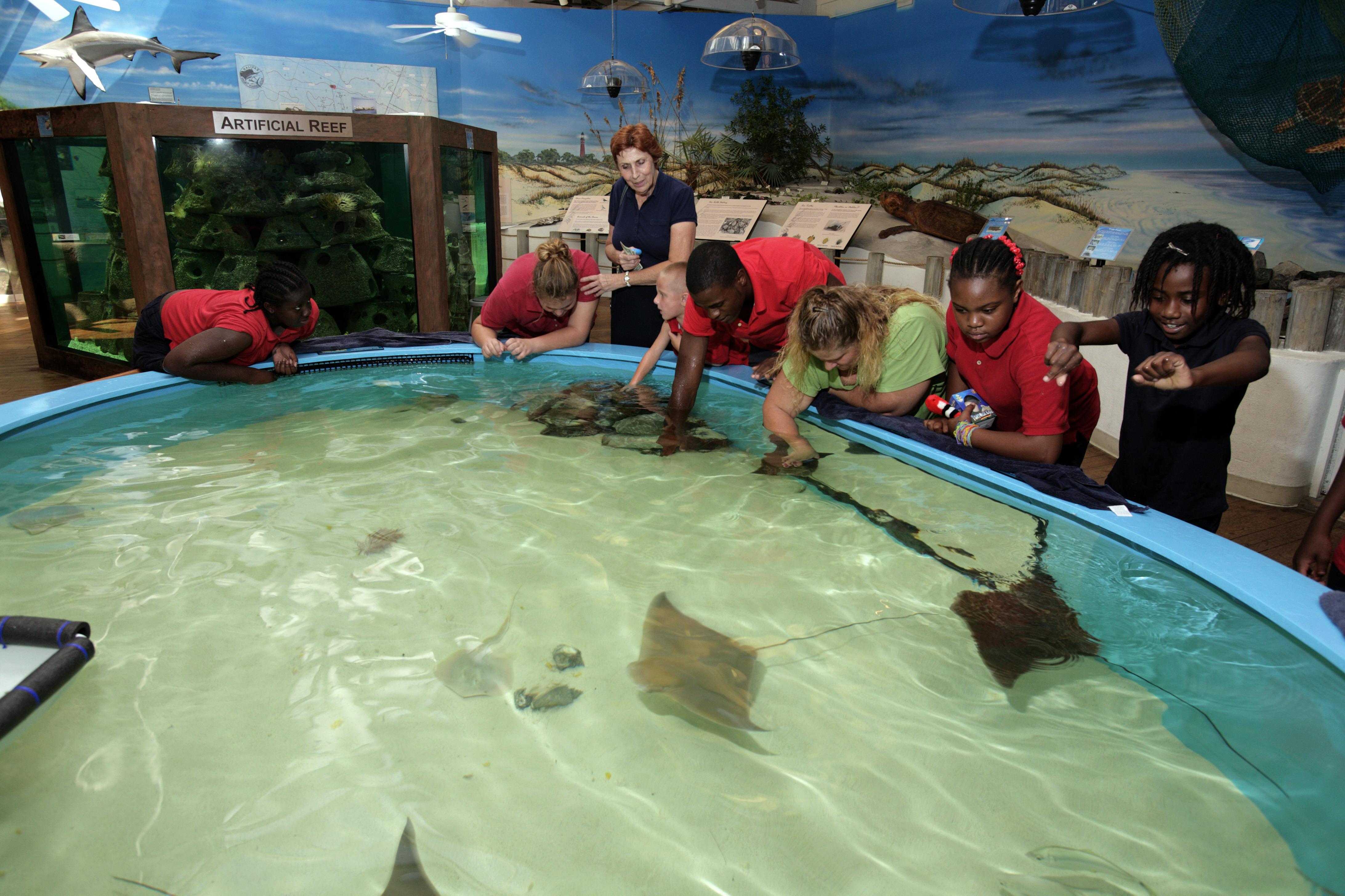 Home Virginia Aquarium Marine Science Center Autos Post