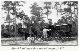 quail hunting with wagon 1937