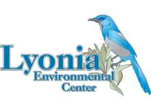 Lyonia Evnironmental Learning Center logo