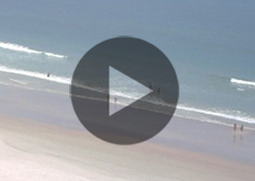 Beach Cams and Daily Safety Report