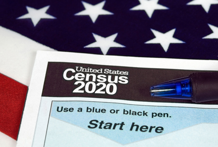 Graphic depicting the census