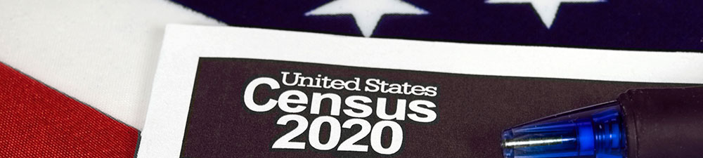 census 2020 example